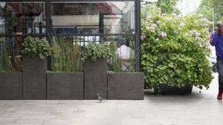 Aménagement de terrasses de cafés et restaurants
